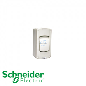 Schneider Kavacha AS IP66 Double Pole Isolator Switch