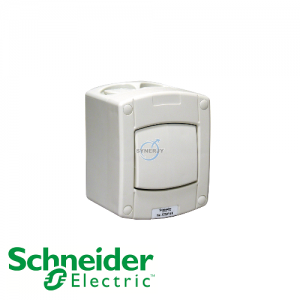 Schneider Kavacha AS IP66 Double Pole Switch