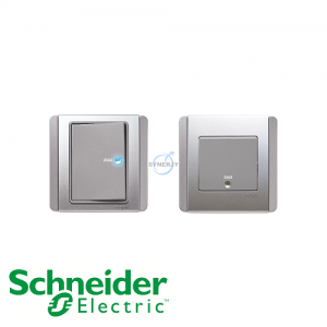 Schneider E3000 Double Pole Switch Grey Silver