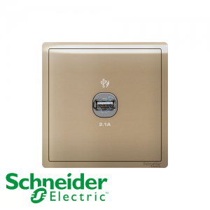 Schneider PIENO 1 Gang USB Socket Outlet Wine Gold
