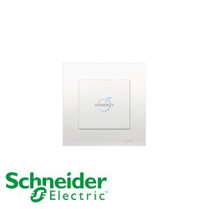 Schneider Vivace Blank Plate