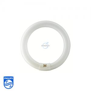 飛利浦 TLE 圓型光管