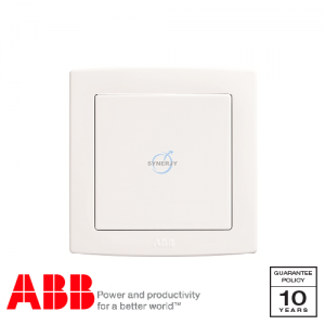 ABB Concept bs Blank Plates White