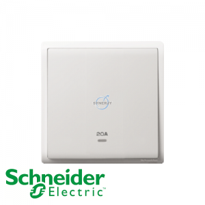 Schneider PIENO Double Pole Switches White