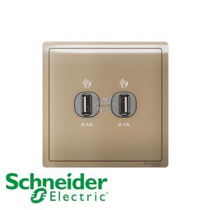 Schneider PIENO 2 Gang USB Socket Outlet Wine Gold