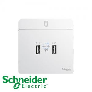Schneider AvatarOn USB Socket White