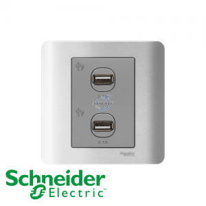 Schneider ZENcelo 2 Gang USB Socket Silver Satin