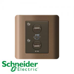 Schneider ZENcelo 2 Gang USB Socket Silver Bronze