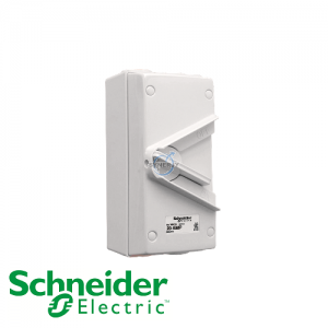 Schneider Kavacha WH IP66 Double Pole Isolator Switch