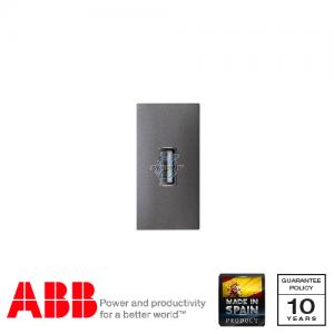 ABB Millenium 單位 USB 傳輸 插座