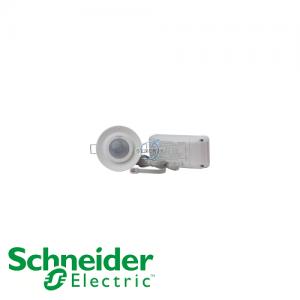 施耐德 ARGUS 360° 暗裝 雙負載 紅外線 感應 開關