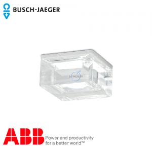 Busch-iceLight® 天花透明外壳
