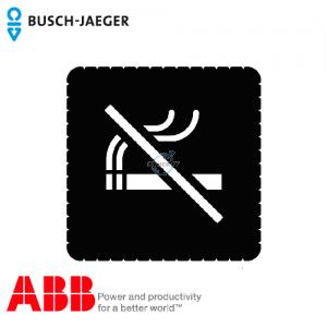 Busch-iceLight® 标志牌 (No smoking)